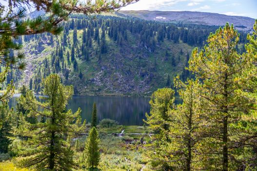 Landscape in the Altai mountains in summer