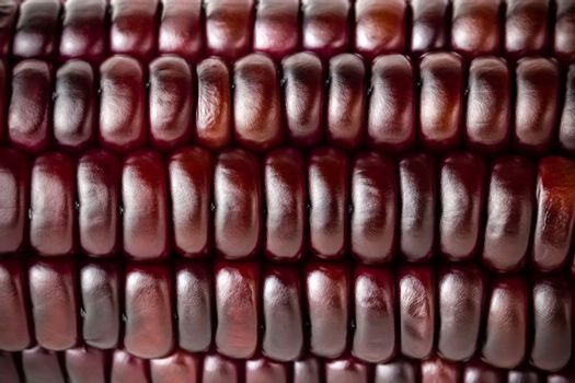 Closeup texture of purple corn seed. Concepts of healthy food.