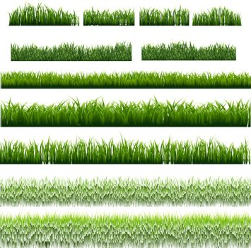 Big Set Green Grass Borders Isolated