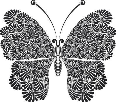 butterfly with beautiful openwork wings