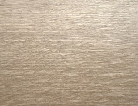 The texture of sawn wood. Background. Macros