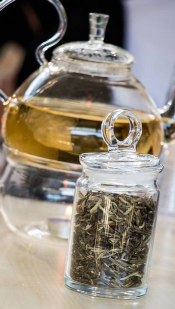 Herbal tea brewed in glass teapot and tea plant in a bottle