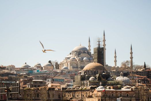 Outer view of Ottoman style mosque in Istanbul