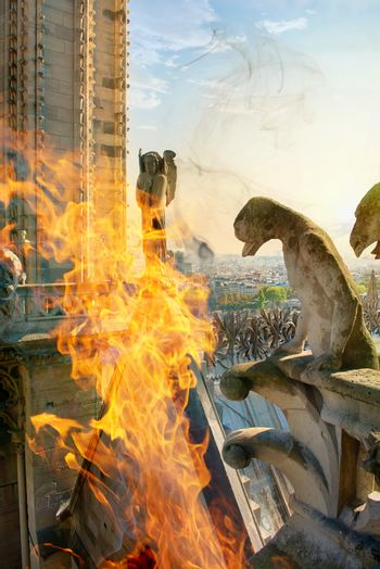 Chimeras in fire on Notre Dame