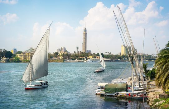 Sailboats in Cairo