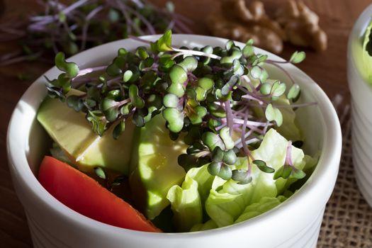 Fresh kale and broccoli microgreens on top of a vegetable salad