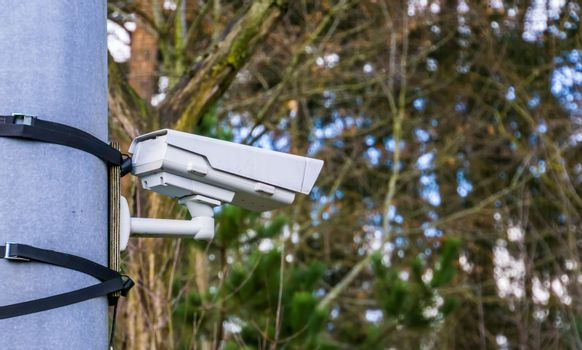 modern surveillance camera mounted on a simple way with bands, security in nature and parks