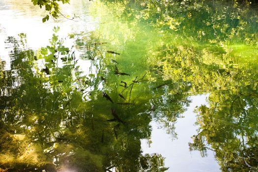 Krka, Sibenik, Croatia, Europe - Light reflection upon the river surface of KrKa National Park