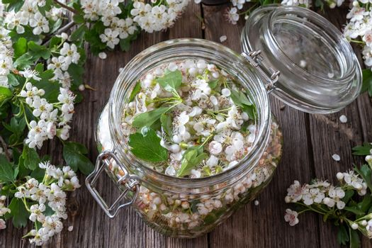 Preparation of tincture from hawthorn flowers