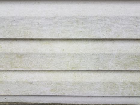 dirty or filthy white home siding with algae