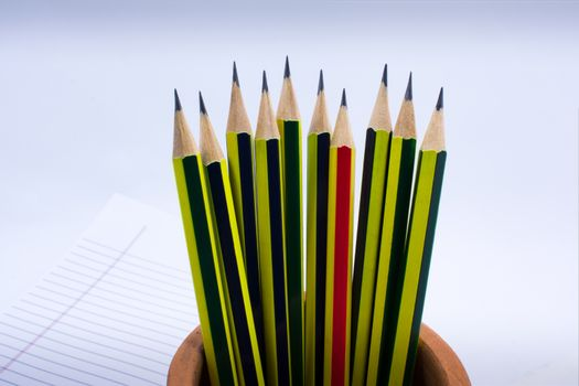 Group of Sharpened Pencil Ready for Use