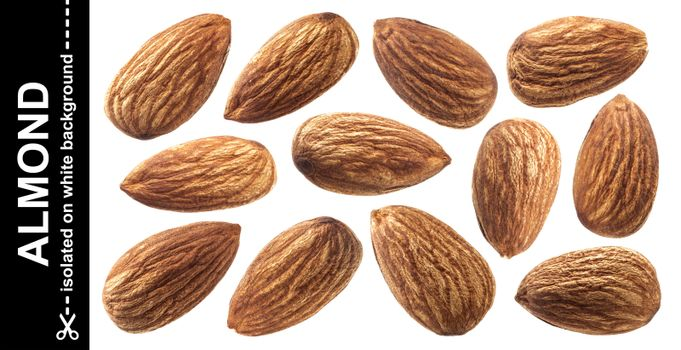 Almond isolated on white background with clipping path. Nuts col