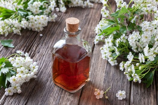 A bottle of hawthorn tincture with hawthorn branches