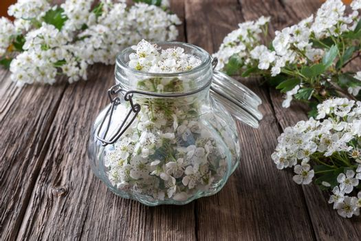 Preparation of tincture from fresh hawthorn flowers