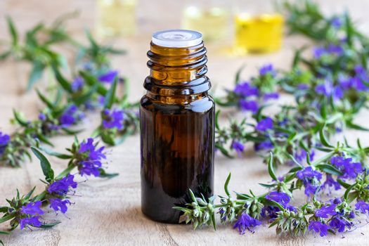 A bottle of essential oil with fresh blooming hyssop twigs