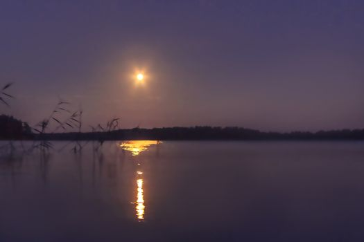 Moonlight on the lake on a summer night, blurred background.