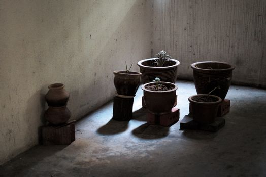 plant pots on bricks in dark shadows in a stained complex hall