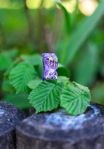 A single violet chocolate easter bunny is hiding itself behind two leaves during easter holiday in order to avoid discovery by the children collecting chocolate. Hiding small gifts and especially chocolate in a garden for children to search them during easter sunday is a tradition in some areas of Germany.