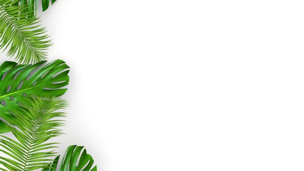 3D render of realistic palm leaves on white background for cosmetic ad or fashion illustration. Tropical frame exotic banana palm. Sale banner design.