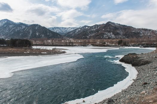 Fast mountain river Katun in Altay, Siberia, Russia. Beauty sunny spring day.