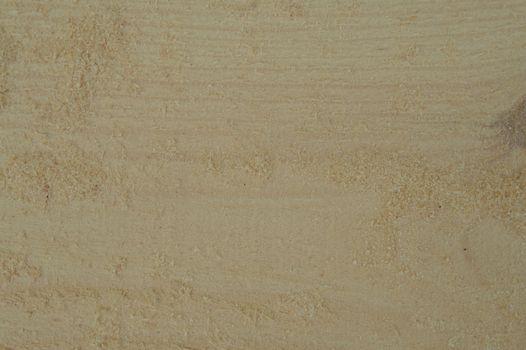 Texture of light wood closeup from sawmill