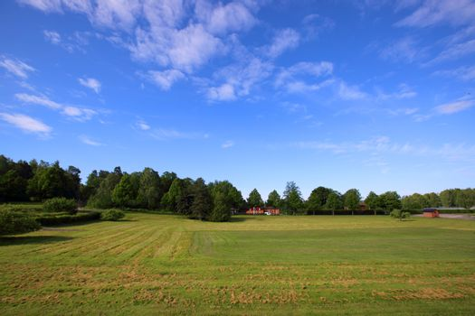 Countryside Sweden view