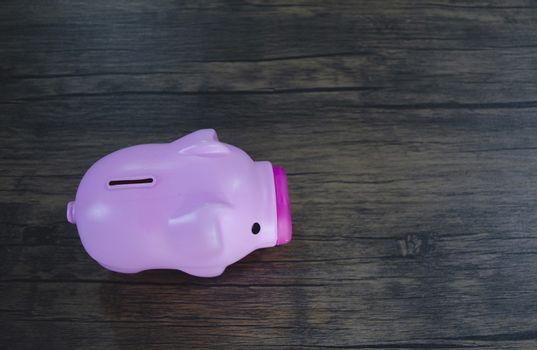 Pink pig on a brown background.Pink Piglet Coin Operated Bottle.
