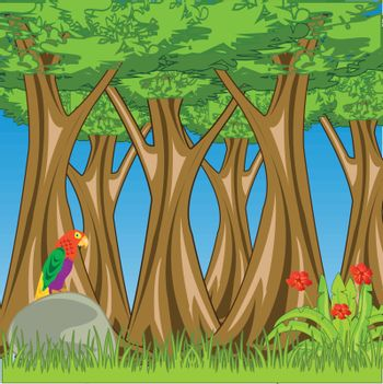 Vector illustration wild and beautiful nature green tropical wood
