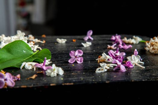 Fallen lilac flowers and leaf on the table
