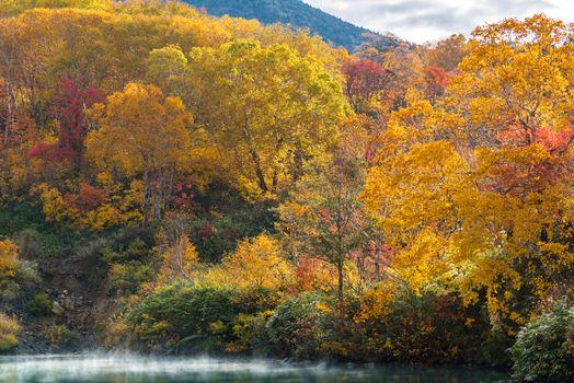 Autumn Forest onsen lake at Jigoku Numa, Hakkoda Aomori Tohoku Japan