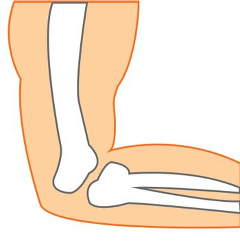 Vector illustration of the construction elbow person