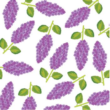 Branch lilac pattern on white background is insulated
