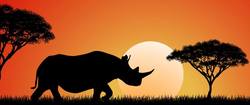 Silhouette of an African rhino. Rhino on the background of the sun and trees. African wild landscape. Sunset. Wildlife of Africa.