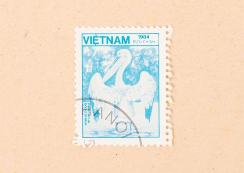 VIETNAM - CIRCA 1984: A stamp printed in Vietnam shows a pelican