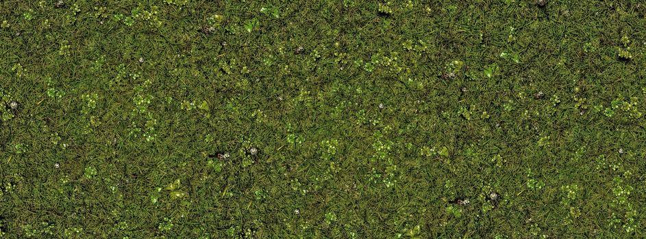 grass texture top view 3d illustration