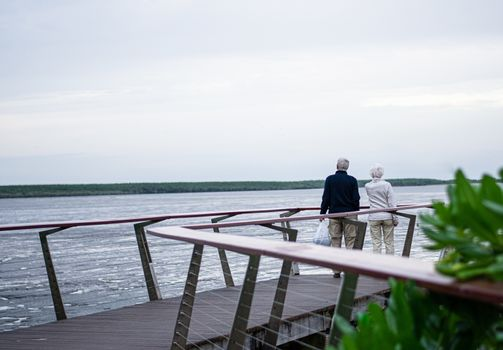 Senior citizen couple looking at ocean on cloudy day