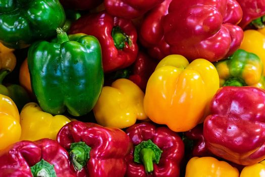 Red, green, yellow colorful capsicum peppers
