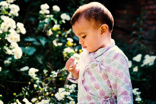 Baby boy wearing traditional Nepali daura bhoto plays with white flowers in garden