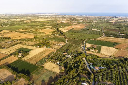 top view of crop fields near of the Mediterranean sea in Tarragona, green field agriculture industry aerial view