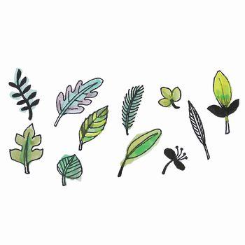 set of watercolor design leaves