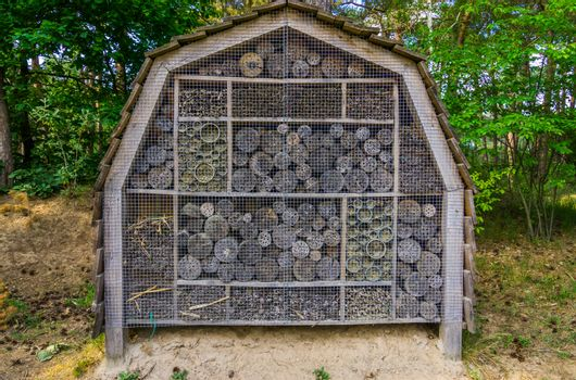 large insect hotel in the forest, shelter for the bees and other insects