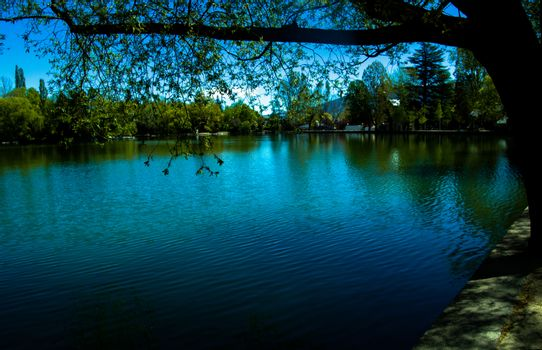 view of Puigcerda's lake surrounded by trees in a sunny day with blue sky