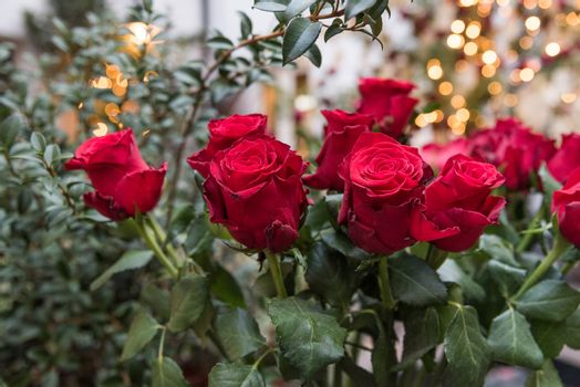 A bouquet of red roses on the street market in London, United Kingdom