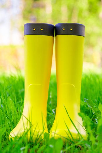 Yellow rubber boots close up on the lush green grass on the mead