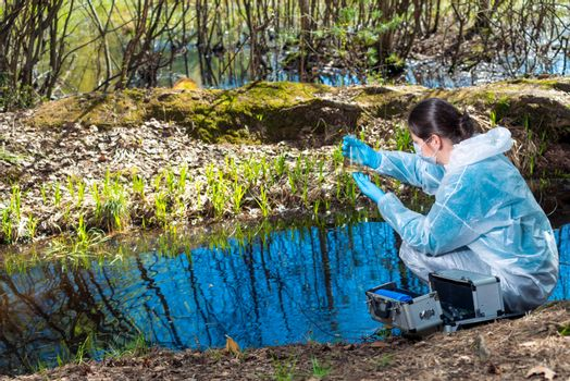 environmental disaster, environmentalist chemist explores the water in the forest river