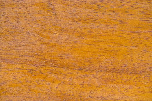 Close-up Abstract Texture Background of Polish Hard Wood
