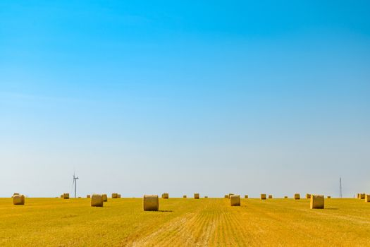Straw Bales on the Bright Yellow Field under Blue Sky. Wind Generator Turbines on the Background