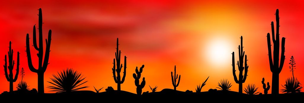 Sunset in the Mexican desert. Silhouettes of cacti and other plants of stony desert against the backdrop of a sunset. Desert landscape with cactuses.