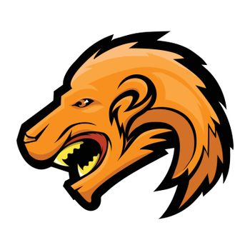 Lion Head Isolated on White Background. Wild African Mascot. Angry Beast Cartoon Character