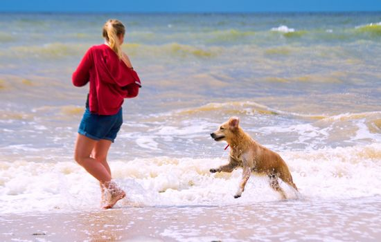 A girl with a dog is playing on the beach
